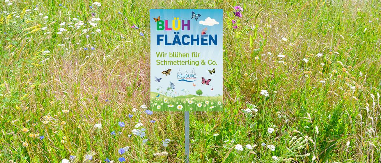 Hinweisschilder für Blühflächen